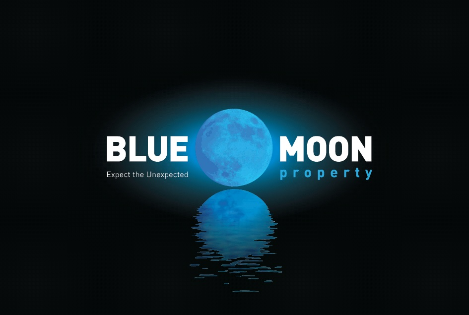 Blue Moon Property PARTNERSHIP AGREEMENT