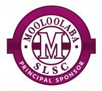 Partner_Principal_logo
